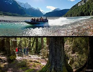 NEW ZEALAND Dart River jet boat forest walk