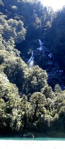 NEW ZEALAND Roaring Billy Falls near Haast