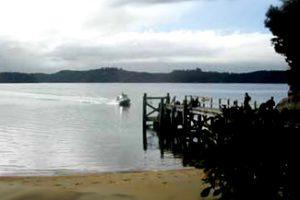 NEW ZEALAND Ulva Island 2